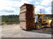 Transporting lumber from the kiln to the wharehouse